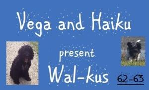 haiku-poetry wal-kus edit 62-63