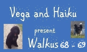 haiku-poetry walkus 68-69