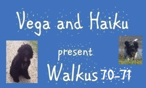 haiku-poetry walkus 70-71