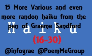 haiku-poetry 2