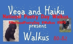 haiku-poetry walkus 80-82 NPD