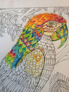 colouring in