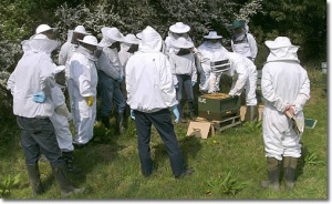 A selection of British Bee-Keepers.