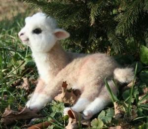 A cuteness of Llama